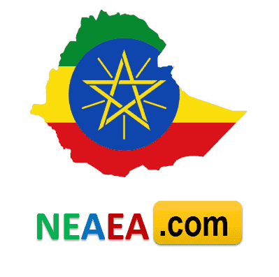 NIMEI Result 2019 (2011) Placement Entrance Examination Ethiopia