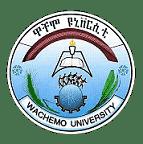 Wachamo University