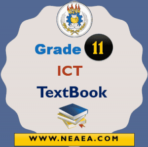 Ethiopian Grade 11 ITC TextBook For Students PDF