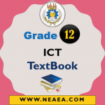 Ethiopian Grade 12 ICT Student Textbook PDF